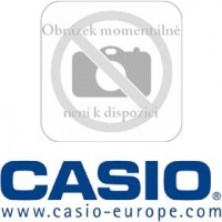 DT 788 RSC(KABEL RS485) CASIO