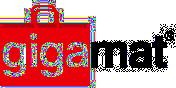 Image result for gigamat